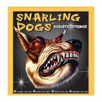 D'Andrea SDP11 - Струны для акустической гитары, Серия: Snarling Dogs, Калибр: 11 - 15 - 23 - 32 - 42 - 52, Обмотка: фосфорная бронза, Натяжение: среднее.
