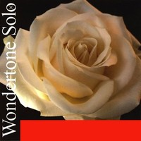 Pirastro 410021 Wondertone Solo Комплект струн для скрипки (синтетика)