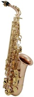 ROY BENSON AS-202G Eb альт-саксофон
