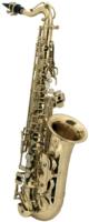 ROY BENSON AS-201  Альт саксофон