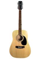 Parkwood W81-12-OP Акустическая гитара 12-струнная с чехлом
