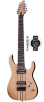 Schecter BANSHEE ELITE-8 Гитара электрическая