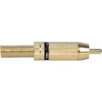 Proel MRCA30BK разъём RCA, кабельный, позолоченные контакты и корпус, чёрное кольцо