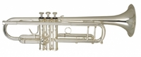 Wisemann DTR-800SP Труба