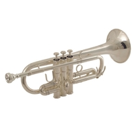 Wisemann DTR-900SG Профессиональная труба