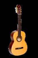 NewTon SCLSNTSP Silena Классическая гитара