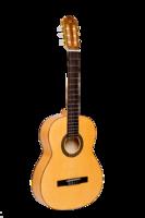 NewTone SCLSNSP Silena Классическая гитара (Полностью из массива)