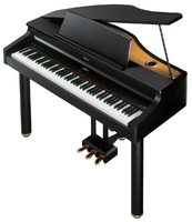 ROLAND RG-1F-SB Цифровой рояль