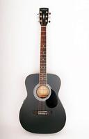 Parkwood PF51E-BKS Электро-акустическая гитара с чехлом