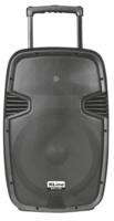XLine NPS-15A Активная аккумуляторная акустическая система с USB/SD/Bluetooth/FM